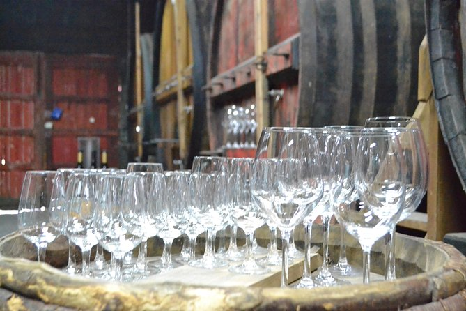 Douro Valley Tour with Visit to two Vineyards, River Cruise and Lunch at Winery