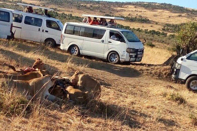 4days Masai Mara and Lake Nakuru Group Joining Budget Safari