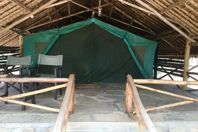 Theatre of the Wild 3 days: Salt Lick Lodge and Satao Camp