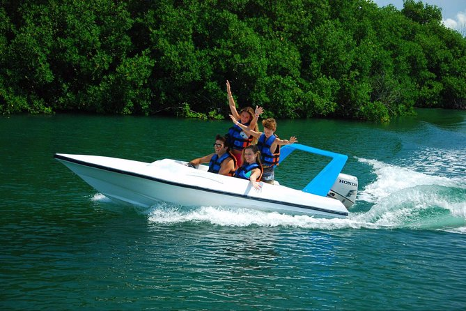 Speedboat jungle tour and snorkel