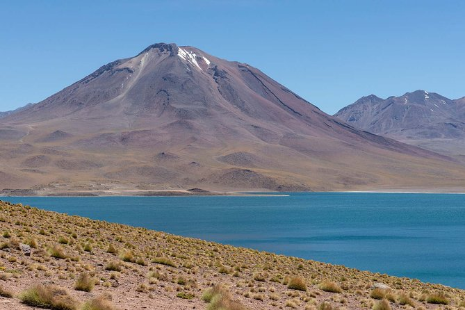 Full day Altiplanic Lagoons + Red stones viewpoint + Salar de Atacama