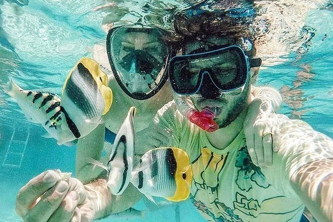 3-hour Lagoon Snorkeling Tour - Private Tour