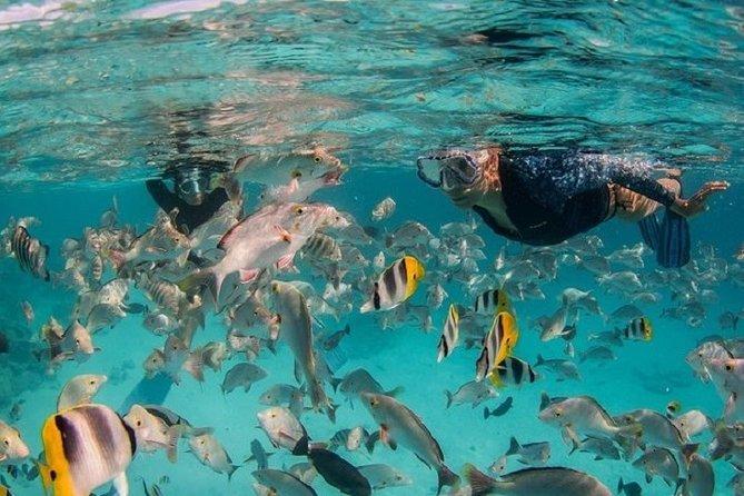 Snorkeling framed in the legendary Tiputa pass