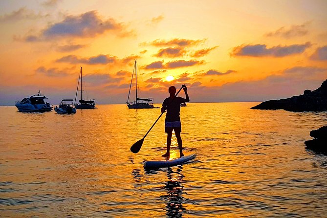 Exclusive Paddle Board around Porquerolles and Giens - transfer by boat.