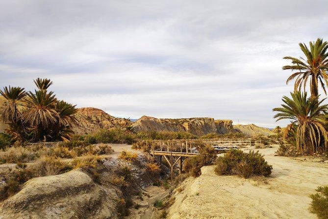 Day trip to Tabernas Desert from Granada