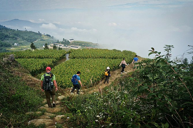 5-Day Private Hiking Tour to Xuefeng Mountain with Accommondation