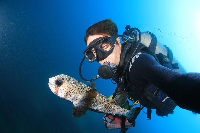Cabo San Lucas Certified 2 Tank Dive at the Famous Arch and Land's End