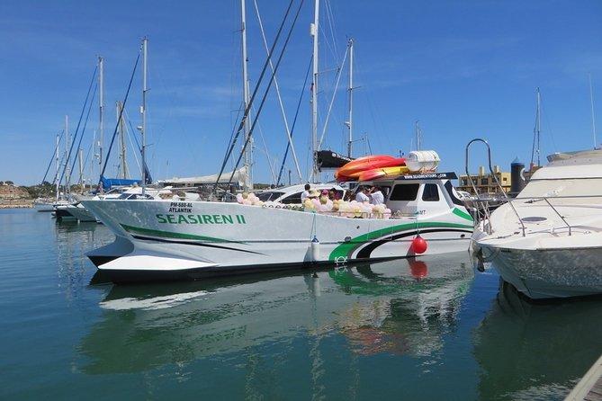 Catamaran Private Tour - Benagil & Marinha Beach - Half day (28 PAX)