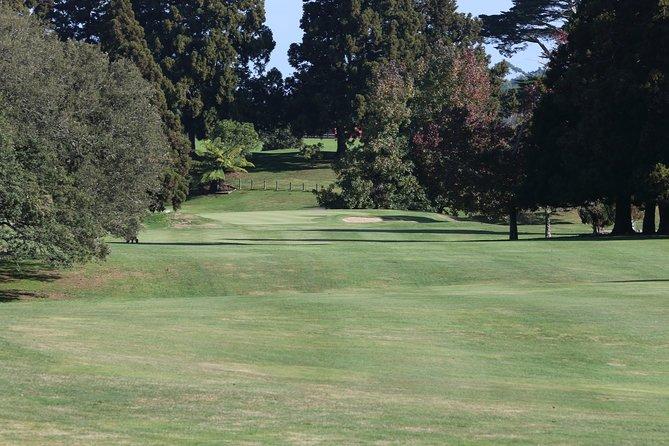 Hobbiton + Golf