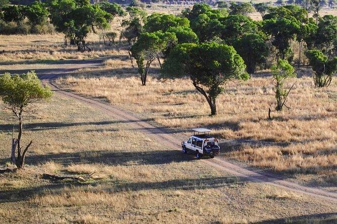 Tanzania Bush to Beach Safari 14 Days