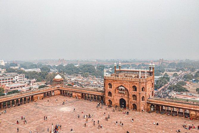 Explore old delhi with a local