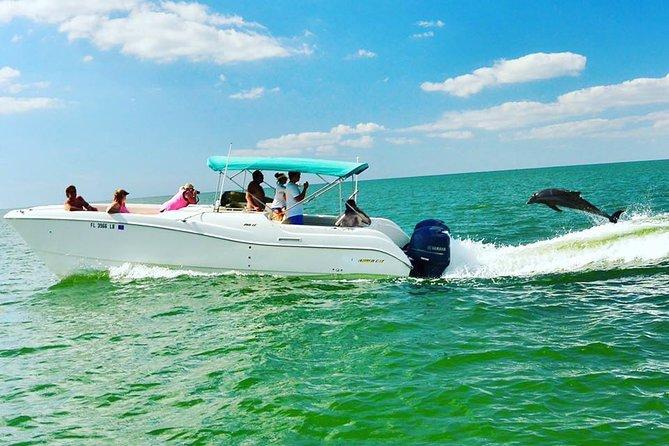 Dolphin Eco Scenic Cruise
