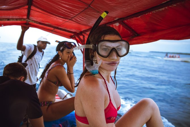 Snorkeling at Blue Lagoon; Starfish; The Rock & Paje Beach