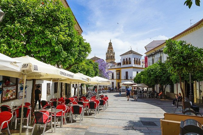 Private 10-hour Shore Excursion from Motril Cruise Port to Cordoba