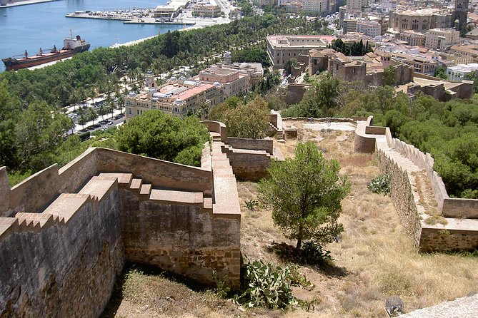 Private 9-hour Shore Excursion from Motril Cruise Port to Malaga