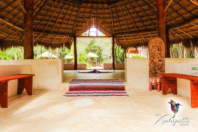 5 Night Retreat Cancun, Mexico, 2 Ayahuasca & 3 Kambo Ceremonies