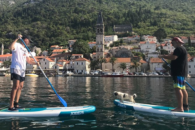Private Guided Standup Paddle Experience in Perast