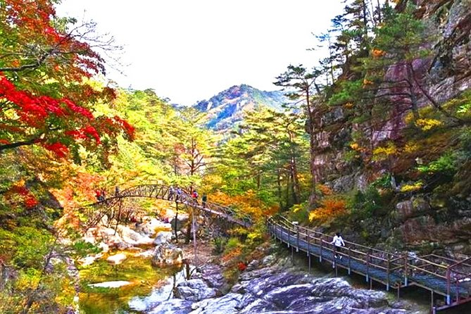 Odaesan National Park hiking day tour: Explore Autumn foliage Korea
