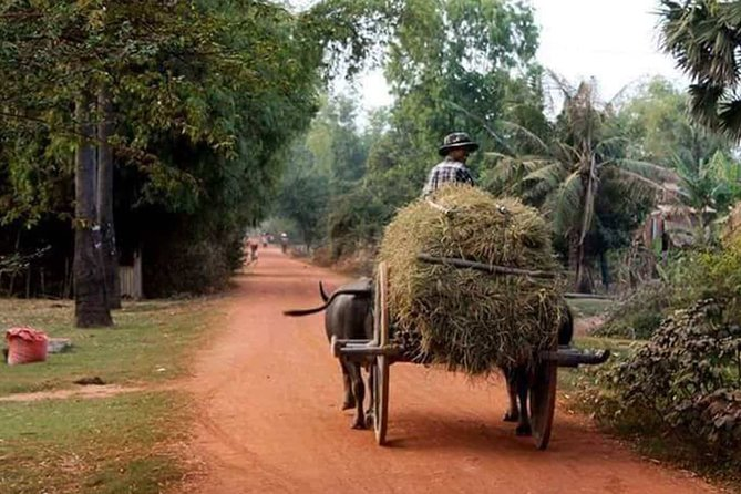 Countryside and Silk Farm Tour by Tuk Tuk
