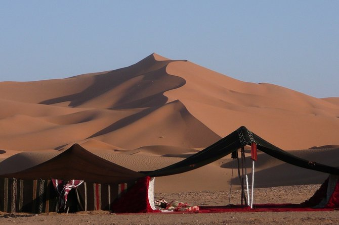 Premium Full-Day Safari, Dune Bash, Camel Ride and BBQ Meal in Desert Camp