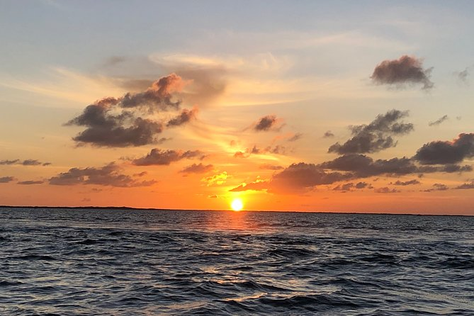 See Wildlife and Sunset- Boat Rental in Key Largo