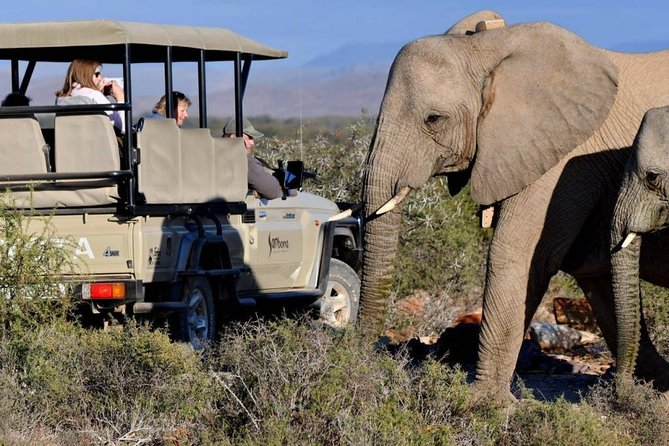 Private transfers from Cape Town to Sanbona Wildlife Reserve (round trip)