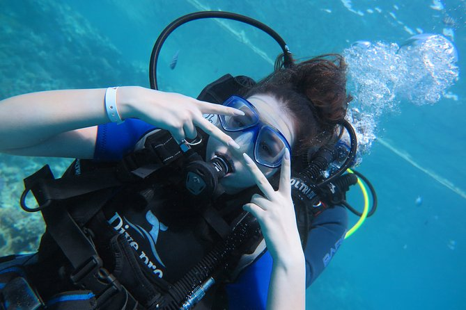 Full-Day Wreck Diving in Hurghada with Pickup and Lunch