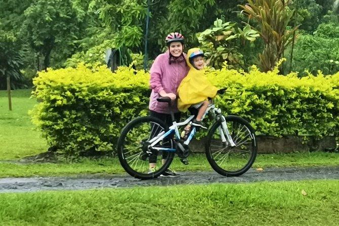 'Take a Peek' Easy Bicycle Tour