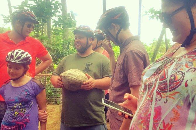 'Eco-eco' Bicycle & Wildlife Centre Tour