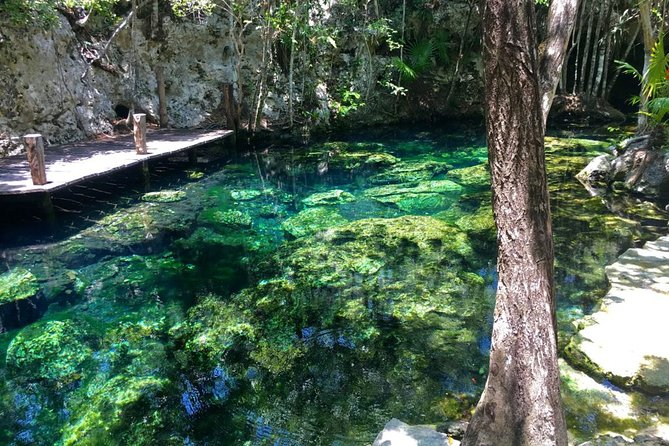 Private Transfer to Cenotes at Riviera Maya