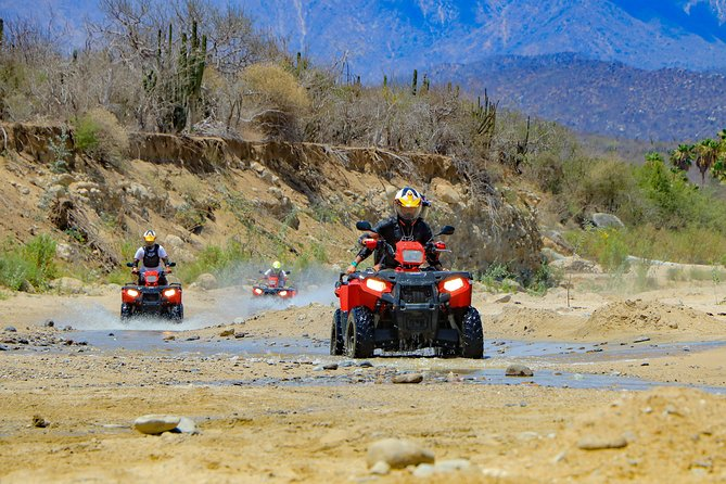 Baja ATV Desert Adventure and Eco Farm
