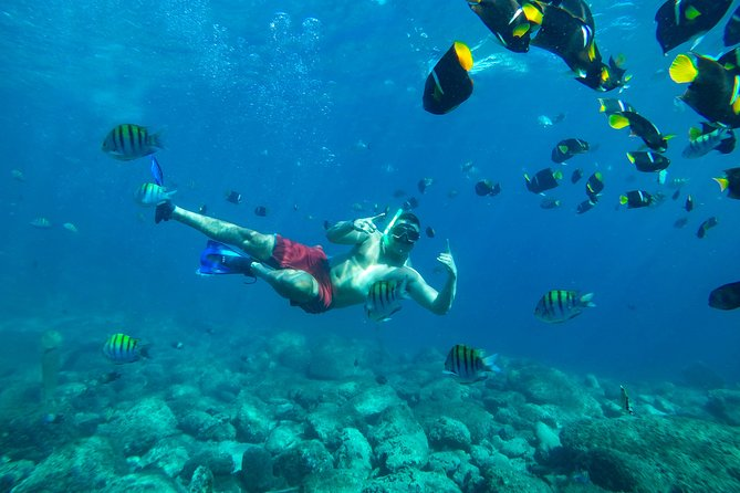 Bali Snorkeling Tour at Blue Lagoon
