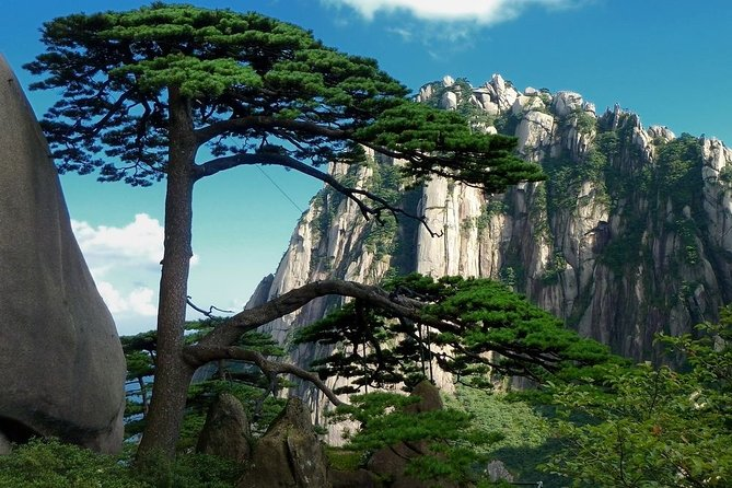 All Inclusive Huangshan Mountain and Hongcun Village Private Efficient Day Tour