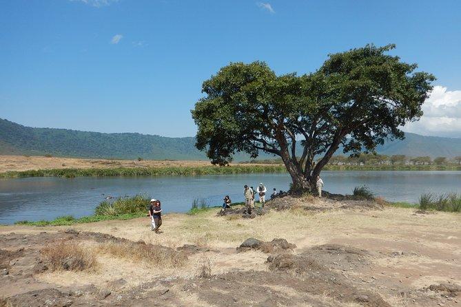 Ngorongoro Adventure Day Tour from Arusha