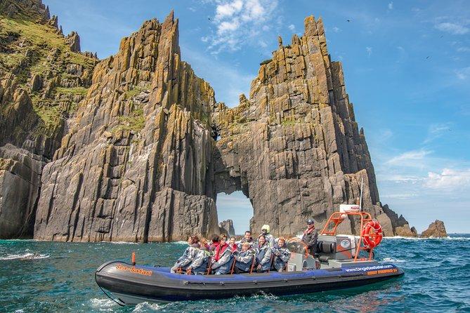 Private family sea safari