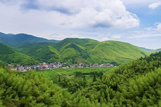 Private Transfer between Hangzhou City and Mogan Mountain