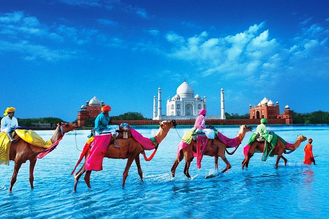 12 Days Classic Rajasthan Tour(Taj Mahal, Tigers, Lakes & Wildlife Tour)