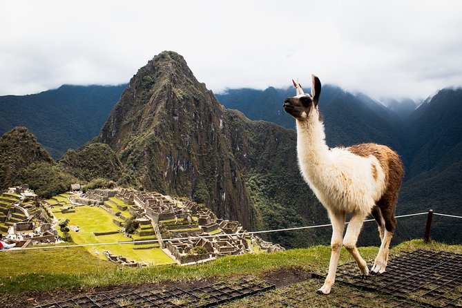 4 Days Sacred Valley and Machu Picchu Tour from Cusco + 2 star hotel