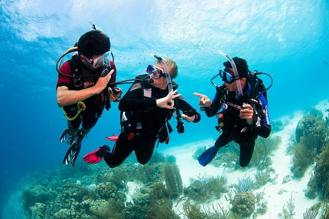 Scuba Diving with Professional Instructor at Playa del Carmen