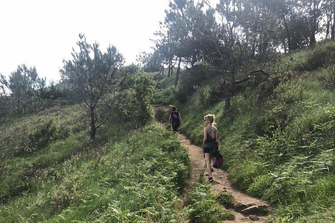 Trekking, Camino de Santiago and Monte Ulia