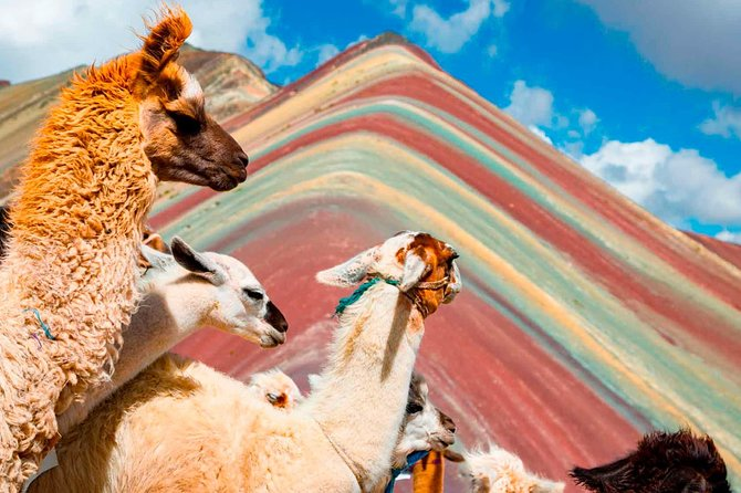 5 days excursion to the 7 Colors Mountain and Machu Picchu plus 2 star hotel
