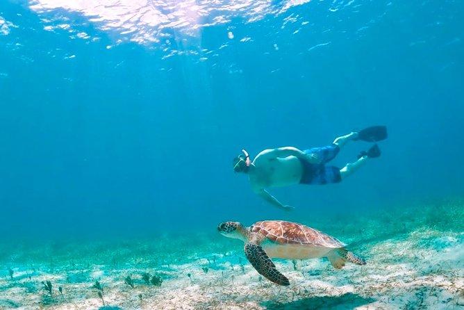 Aquafari Flight Tour Culebra Island from San Juan