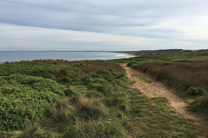 Phillip Island Walking & Bird Watching Tour