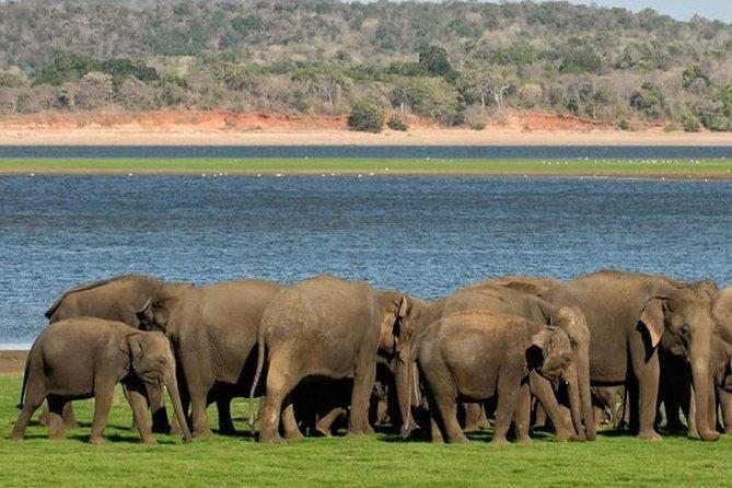 4 Days Heritage Tour With A Safari
