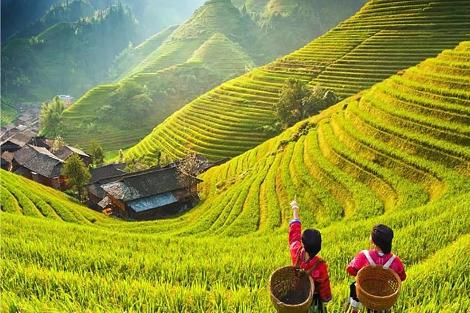 3-Day Private Tour from Beijing by Air: Guilin, Longji Rice Terrace and Yangshuo