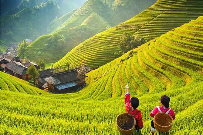 3-Day Private Tour from Chengdu by Air:Guilin, Longji Rice Terrace and Yangshuo