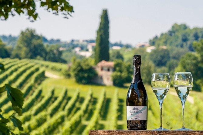 Valdobbiadene (Treviso): Prosecco Tasting Experience