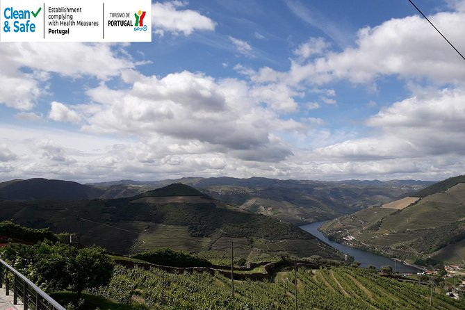 Private Day Tour to Douro Valley with Wine Tasting