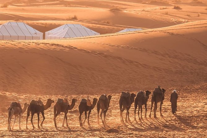 3 Days Private Desert Tour Start And Ends In Marrakech Via Merzouga