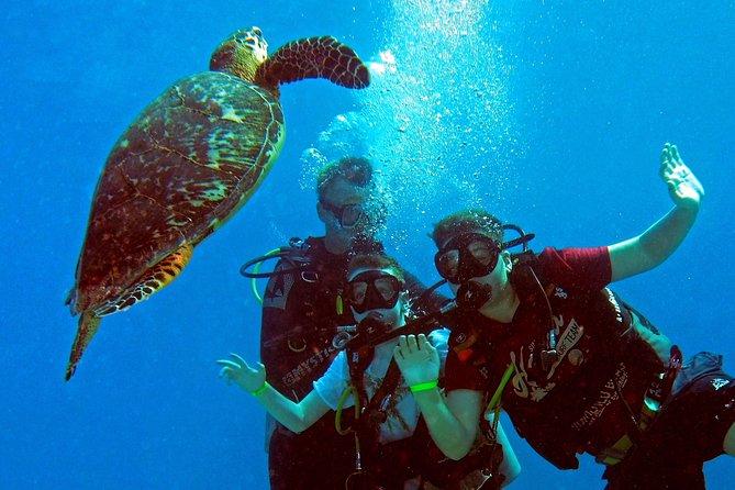 First Time Scuba   Try Scuba Diving   Discover Scuba Diving